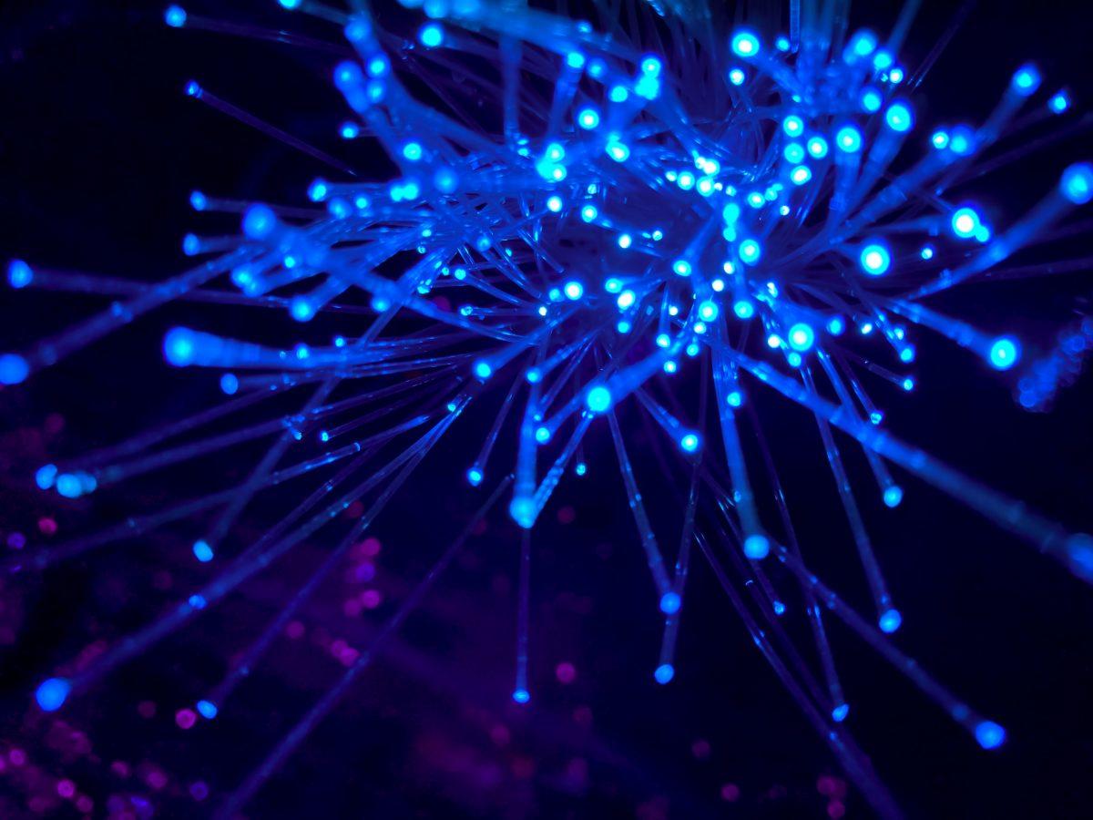 network fiber cables